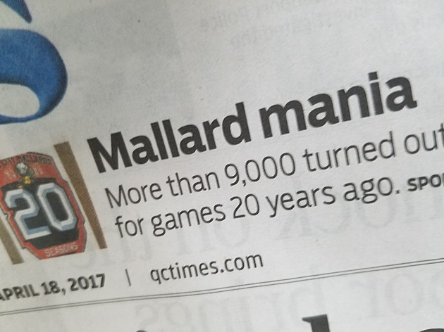 Mallards Mania Front