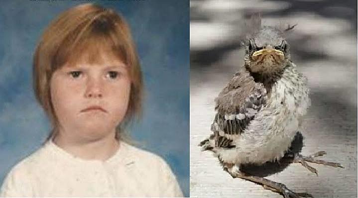 jenna angry birds